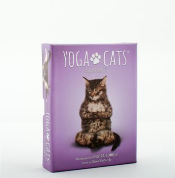 Bild på Yoga Cats Deck & Book Set