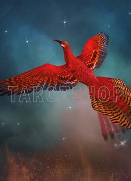 Bild på Magic Phoenix